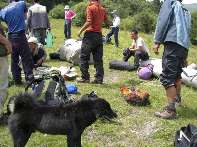 中国、四川省、三奥雪山登山報告  参加11名。_d0007657_1531691.jpg
