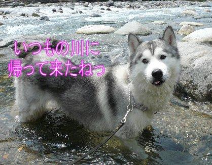 f0112407_14295713.jpg