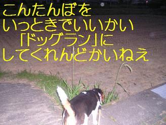 d0104209_22192250.jpg