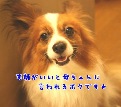 d0013149_261665.jpg