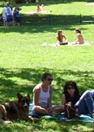 セントラルパークで模型ヨット遊びのできる池 Conservatory Water_b0007805_1333319.jpg