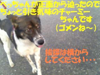 f0121712_10204598.jpg