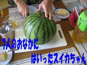 b0028524_1758239.jpg