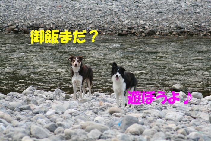 d0077740_203776.jpg