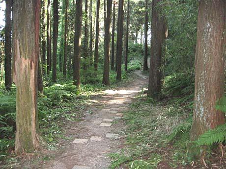 雄蛇ヶ池(おじゃがいけ)_b0114798_18542185.jpg