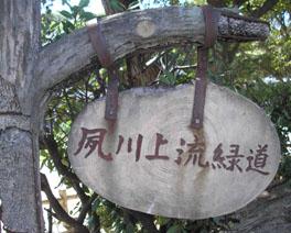 夏の夙川(しゅくがわ)_e0055098_21203396.jpg