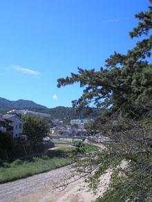 夏の夙川(しゅくがわ)_e0055098_21255799.jpg