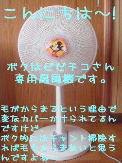 b0081503_1252012.jpg