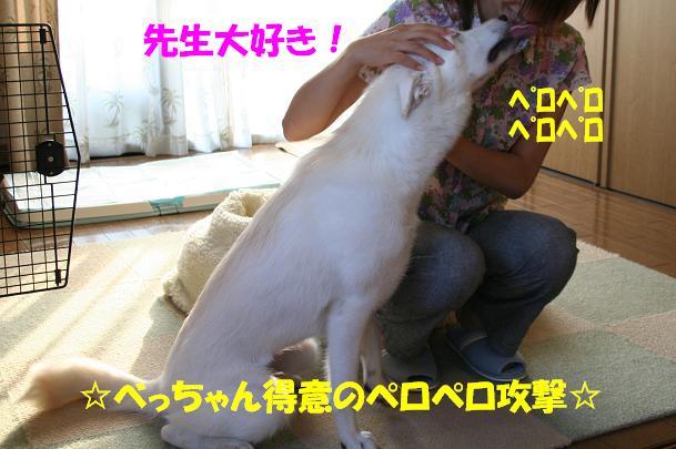f0121712_1626936.jpg