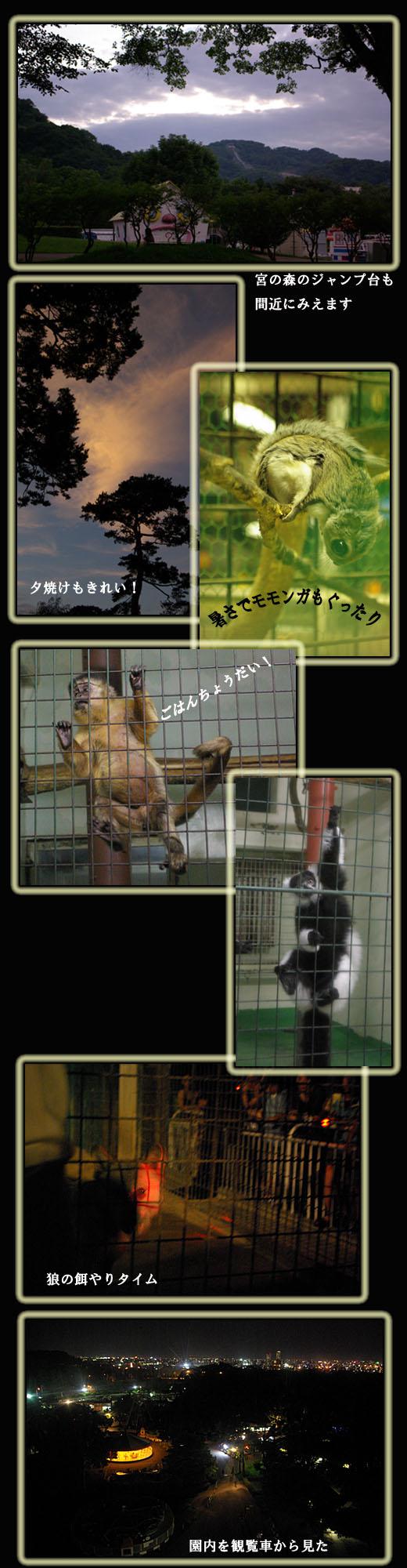 さっぽろ 円山動物園_b0019313_18103431.jpg