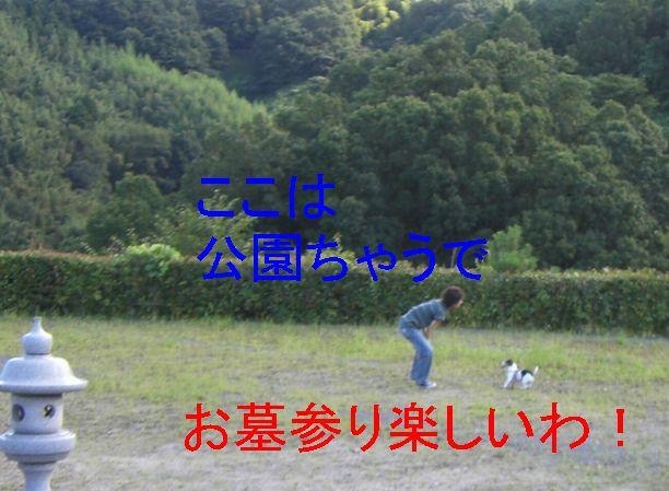 f0053952_1622219.jpg