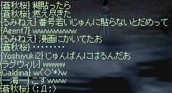c0045001_1516508.jpg