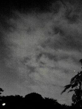 Mr.熱帯夜_f0041351_16134326.jpg