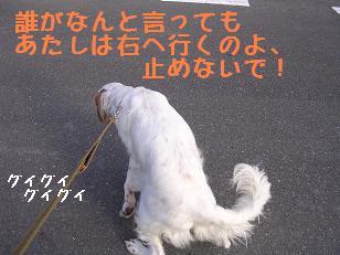 b0113725_10303277.jpg