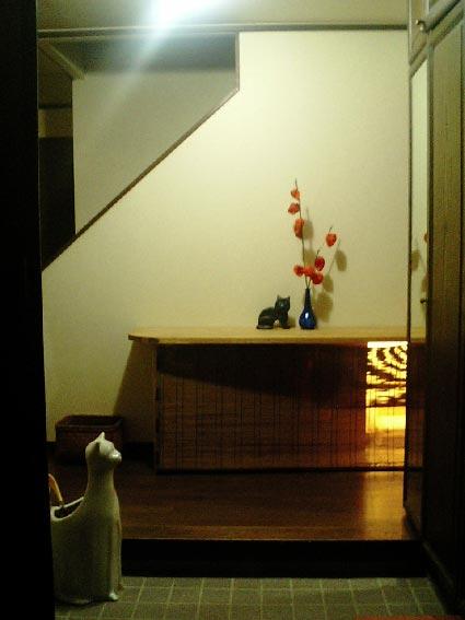 猫トイレ_b0019674_123510.jpg