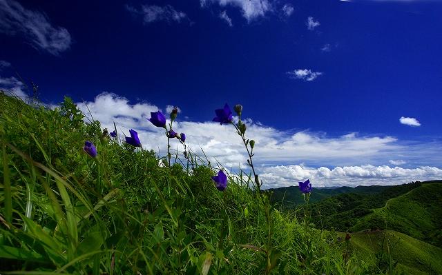 山に暮らせば_e0091879_22174748.jpg
