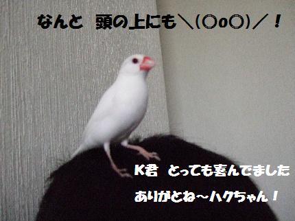 d0070289_14232981.jpg