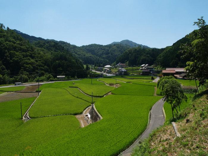 神社から西の風景_c0116915_2245470.jpg