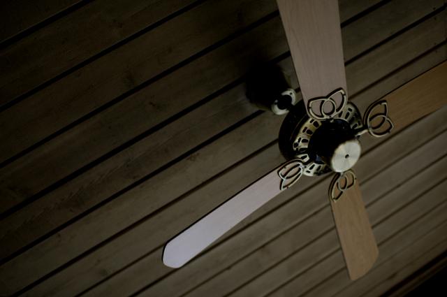 船のアトラクションに並んでいる時、暑くて暑くて天井に飾ってある扇風機みたいなのを撮ってみました。暇だったからです(笑)
