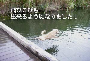 f0114893_21204413.jpg