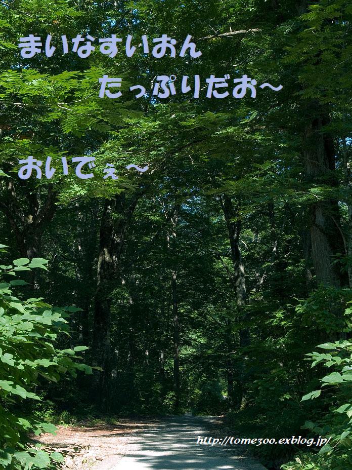 f0001496_213477.jpg