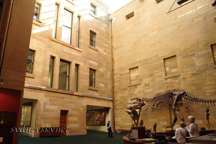 Australian Museum_f0084337_20331512.jpg