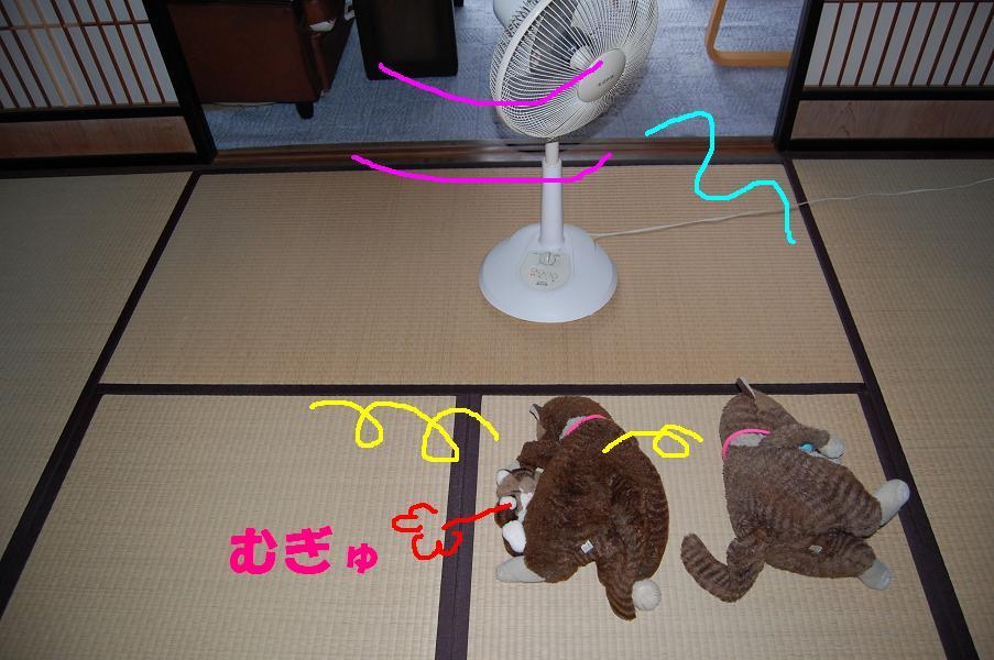 b0059978_15164673.jpg