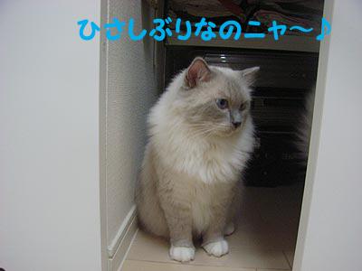 f0014893_19352112.jpg