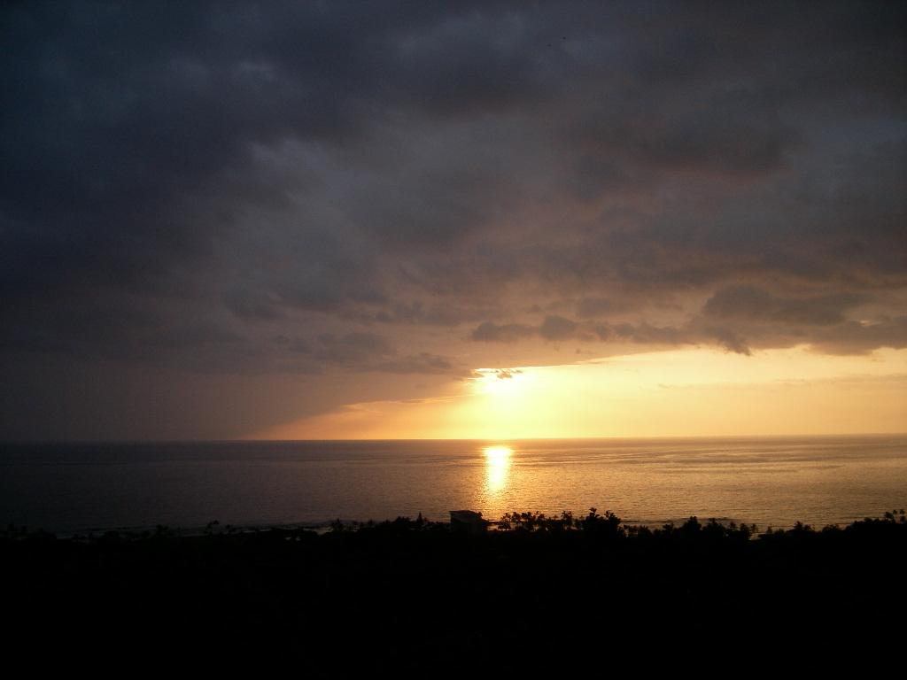 ハワイから_c0099133_0253185.jpg