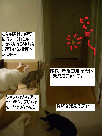 c0132537_1228505.jpg
