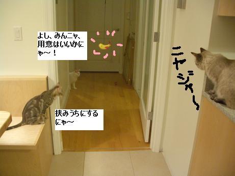 c0132537_12321120.jpg