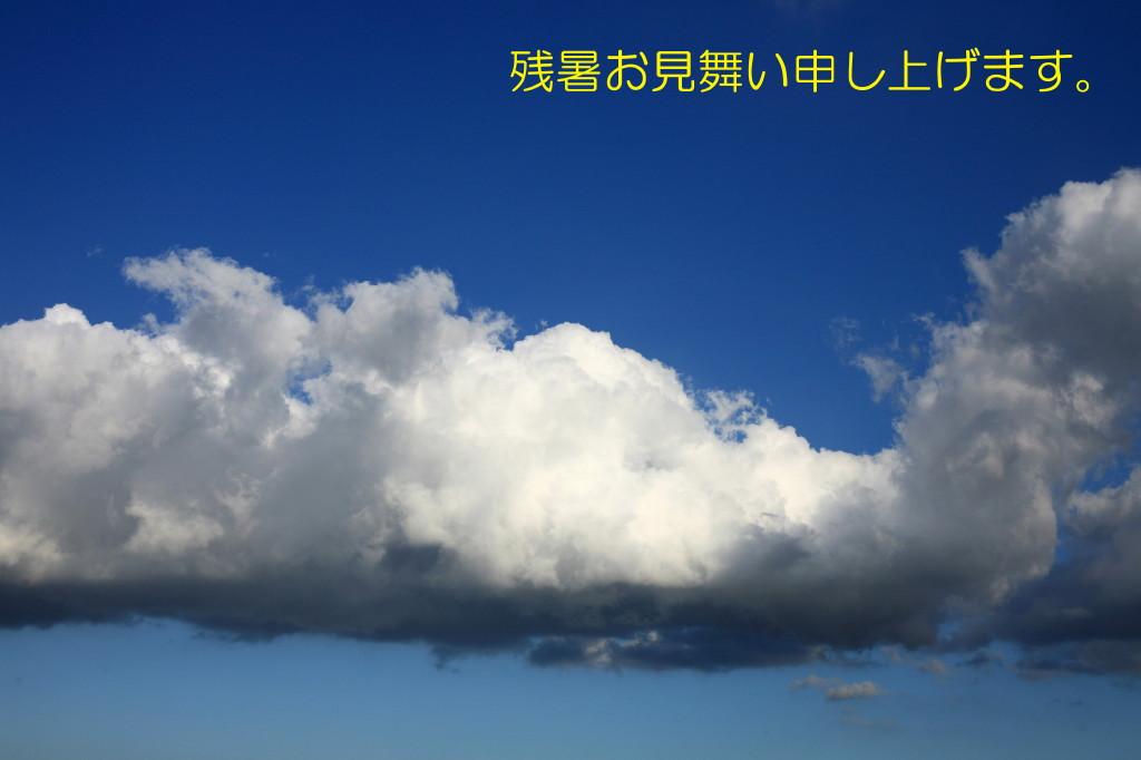 d0110380_0731.jpg