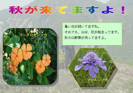 b0025101_1235023.jpg
