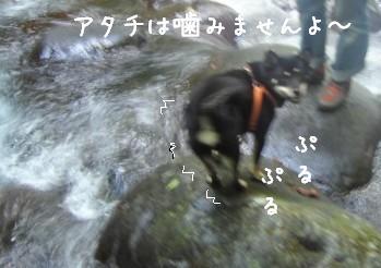 清里旅行・・・吐竜の滝編_f0068501_1611185.jpg