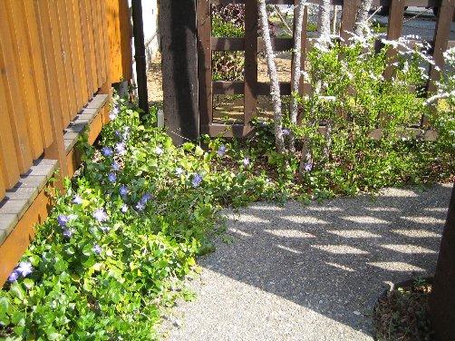 2007 LOG春の風景 3_c0038619_15192339.jpg