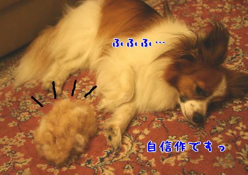 d0013149_136663.jpg