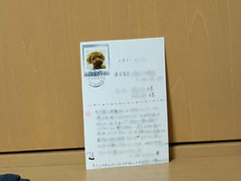 b0032175_16551848.jpg