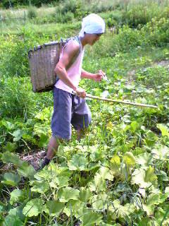 農場Day_b0118191_21573435.jpg