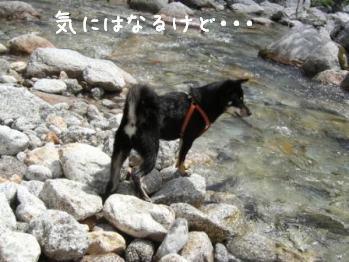 清里旅行・・・尾白川編_f0068501_1413323.jpg