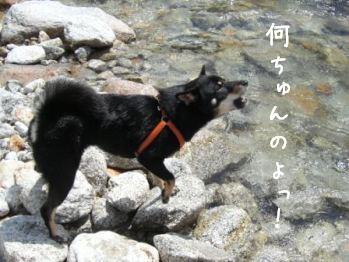 清里旅行・・・尾白川編_f0068501_14143349.jpg