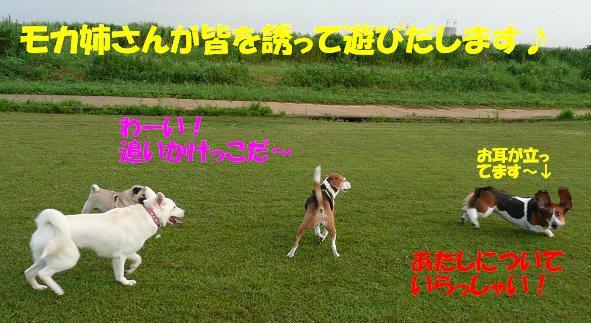 f0121712_10412755.jpg