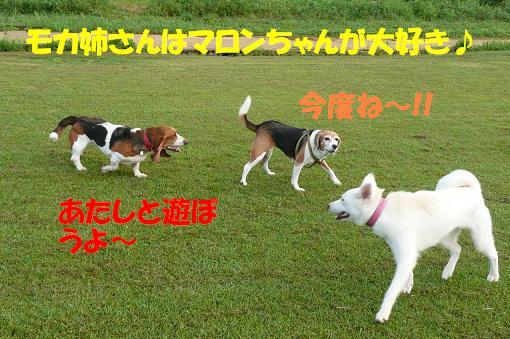 f0121712_10414234.jpg