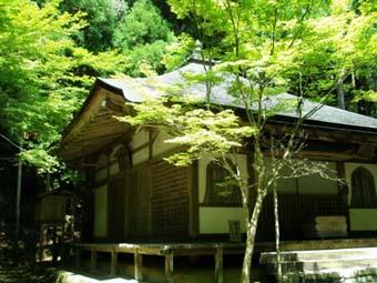 京都・高山寺_a0099744_1443283.jpg