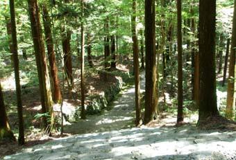 京都・高山寺_a0099744_1452791.jpg