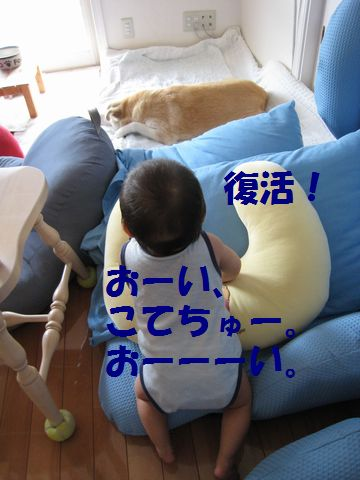 a0090451_10534840.jpg