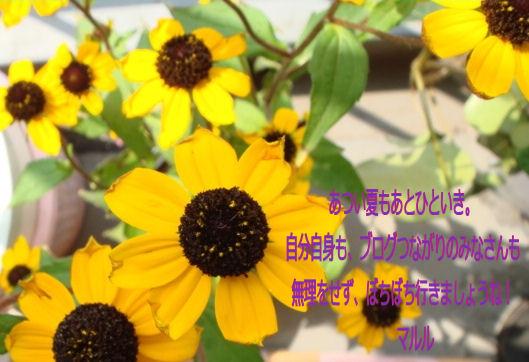 f0126151_9495525.jpg