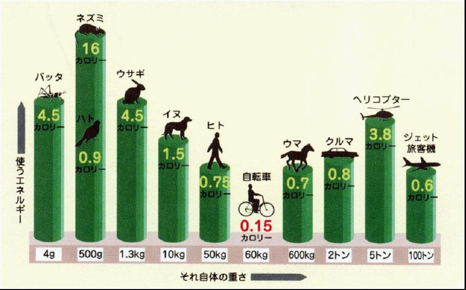 http://pds.exblog.jp/pds/1/200708/22/53/c0061853_1092654.jpg
