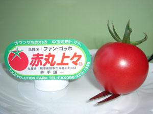 「トマト物語り Q&A-3」_c0126766_12461121.jpg