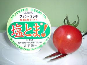 「トマト物語り Q&A-3」_c0126766_14161245.jpg