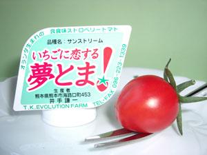 「トマト物語り Q&A-3」_c0126766_14323386.jpg